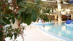 有美丽的干净的大海的豪华旅游胜地游泳场 4K 在手段水池的热带树 影视素材