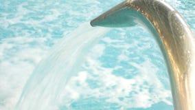 有美丽的干净的大海的豪华旅游胜地游泳场 4K 在游泳场的水疗法 舒适放松 影视素材