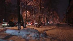 有美丽的树和随风飘飞的雪和通过车的积雪的街道根据街灯 影视素材