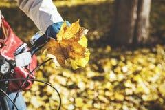 有美丽的槭树的女性手离开举行自行车handleba 图库摄影