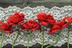 有美丽的红色郁金香的老木板 库存照片