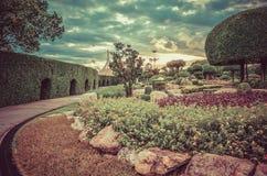 有美丽的花和日落的梦想的公园在葡萄酒样式 库存照片