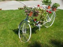 有美丽的花的老白色自行车 免版税库存照片