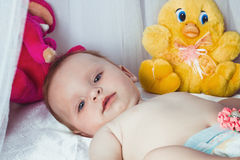 有美丽的蓝眼睛的美丽的女孩 免版税库存图片
