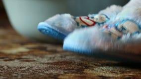 有美丽的蓝色熊的舒适的家用拖鞋 影视素材