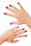 有美丽的被修剪的红色指甲盖的妇女 免版税库存图片