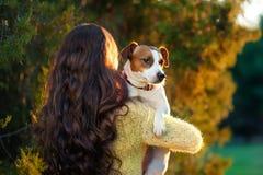 有美丽的长的头发的少妇站立与她和拿着在她的肩膀的杰克罗素狗  免版税库存图片