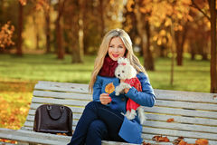 有美丽的头发的豪华白肤金发的女孩在一件外套在秋天公园 库存图片