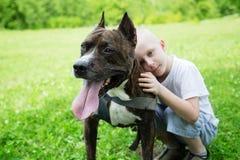 有美国斯塔福德郡狗的男孩 免版税库存照片