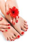 有美好的红色被修剪的钉子的妇女 免版税库存照片