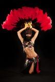 有羽毛风扇的下跪的肚皮舞表演者 库存图片