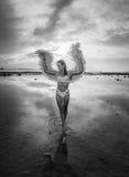 有翼的美丽的天使妇女 免版税库存照片
