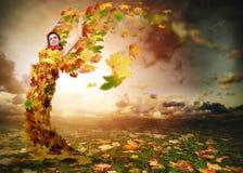 有翼的Autumn夫人 库存图片