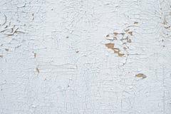 有老削皮的难看的东西背景织地不很细墙壁 库存照片