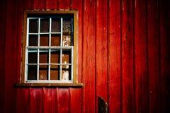 有老削皮红色木墙壁和难看的东西被打碎的窗口的可怕被放弃的房子在剧烈的照明设备下 免版税库存照片