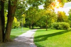 有老树和绿色草坪的美丽的庭院 图库摄影