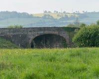 有老桥梁和油菜籽领域的草甸 免版税库存图片