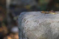 有老石工的石墙 免版税图库摄影