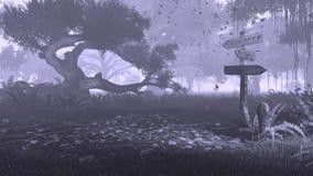 有老路标黑白照片的夜森林 免版税库存图片