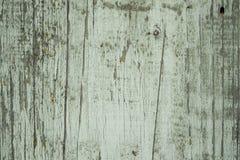 有老钉子的老木委员会 库存照片