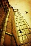 有老玻璃电梯和飞鸟的庭院 免版税库存照片