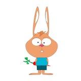 有耳逗人喜爱的小的兔宝宝的红萝卜 免版税库存照片