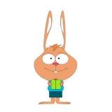 有耳滑稽的逗人喜爱的小的兔子 免版税库存图片
