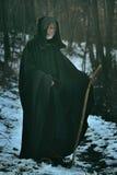 有职员的老圣人木头的 免版税库存图片