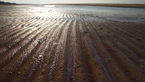 有肋骨沙子-波罗的海与白色沙子的海湾海滩在日落- 4K有缓慢的照相机运动的录影和内在 股票录像