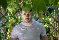 有肌肉和光秃的胸口的英俊的半赤裸人在阵雨捉住了在庭院里 库存图片