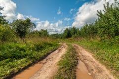 有肮脏的水坑的农村土路在雨以后 图库摄影