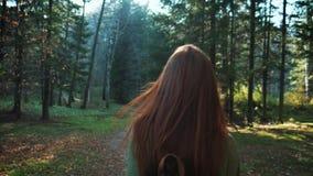 有背包的一个年轻美丽的红发女孩通过森林或公园走 旅行单独,行家步行者 股票视频