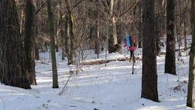 有背包的女孩走通过森林的 影视素材