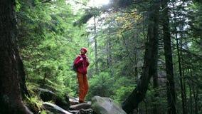 有背包的妇女徒步旅行者,佩带在红色夹克和橙色裤子,走在山的森林里 影视素材