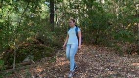 有背包的徒步旅行者妇女走在森林里的 股票视频