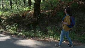 有背包的徒步旅行者妇女走在路的在森林里 股票录像