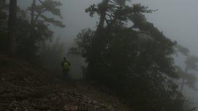 有背包的游人沿着走山坡通过阴沉的有雾的森林 股票录像