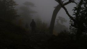 有背包的游人沿着走山坡通过阴沉的有雾的森林 影视素材