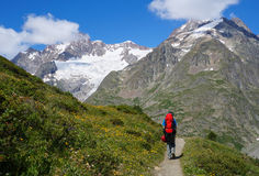 步行在游人tr的山的背包徒步旅行者 免版税图库摄影