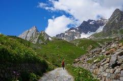 步行在游人tr的山的背包徒步旅行者 免版税库存照片
