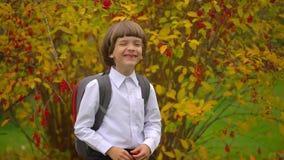 有背包的笑对照相机的微笑的愉快的逗人喜爱的男孩男小学生画象户外,获得一年级的学生乐趣 股票录像