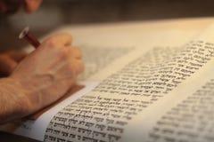 有胡子文字的犹太人在羊皮纸纸卷 被拍的照片:2015年12月30日, 免版税图库摄影