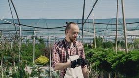 有胡子的一位年轻花匠,去庭院并且检查植物 工作在温室幼木的花匠 股票录像