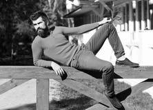 有胡子的人在木扶手栏杆说谎 免版税库存照片