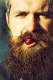 有胡子的人用红色樱桃 库存照片