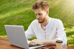 有胡子的年轻悦目男性自由职业者在便衣在晴朗的公园,工作坐他的膝上型计算机,喝 库存照片
