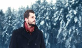 有胡子的深色的人在冬天,神色在多雪的背景 免版税图库摄影
