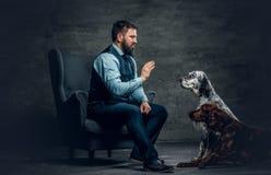 有胡子的男性和两条爱尔兰人的特定装置狗 库存图片