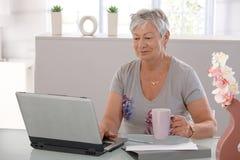 有膝上型计算机的年长妇女 免版税库存照片
