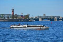 有船嘴装饰的专栏和Birjevoy桥梁在圣彼德堡,俄罗斯 免版税库存图片